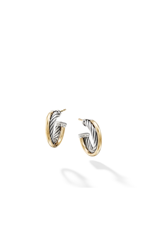Hoop Earrings with 18K Gold product image
