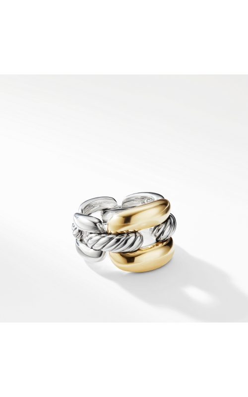 Wellesley Link Large Chain Link Ring with 18K Gold product image