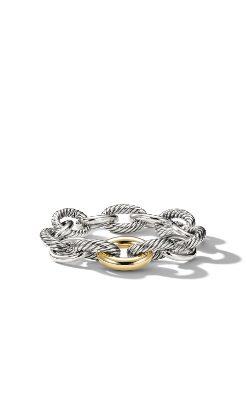 Oval Extra-Large Link Bracelet with Gold product image